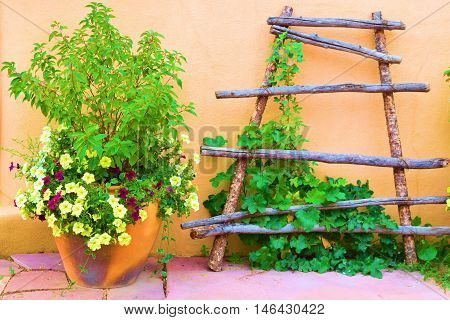 Rustic wood decoration beside a potted plant taken in a courtyard garden