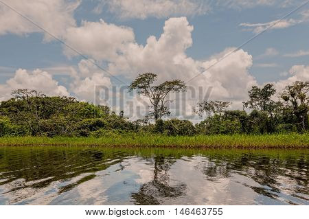 Clouds Rising From The Amazonian Jungle On Lagoon Grande In The Cuyabeno Wildlife Reserve Ecuador