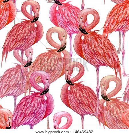 Watercolor pink flamingos, exotic birds, beautiful seamless floral tropical pattern background