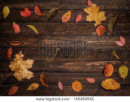 Bright autumn leaves bordering on rustic wooden boards. Round frame top view. Colorful autumn leaves on a dark old wood background.