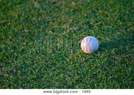 Golf Ball In Play