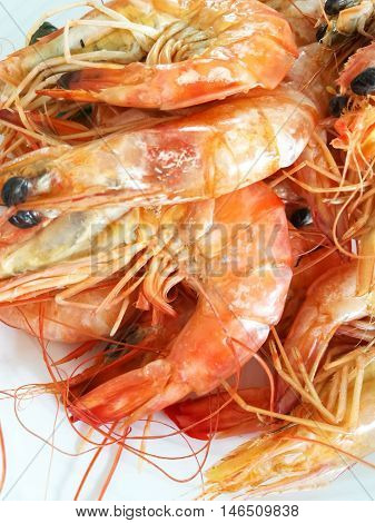 Cropped Shot of Steamed Shrimp On a White Plate