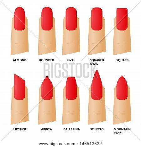 Nails shape. Female manicure. Vector illustration. Fashion icons.