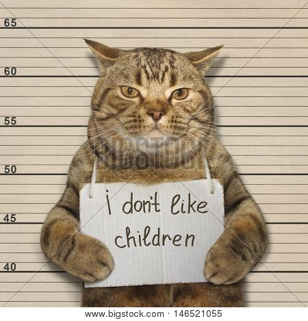 A cat do not like nasty little children. It was arrested.