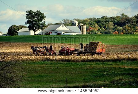 Lancaster County Pennsylvania - October 16 2015: Amish woman driving a team of four horses accomoanied by her son riding on a hay bale wagon