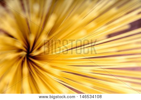 Raw Pasta spaghetti abstract background. Food themes.