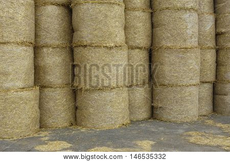 France, horizontal picture of bales of straw in Normandie