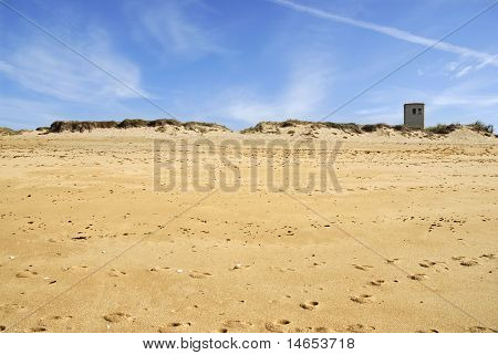 Dune of La Cotiniere in France