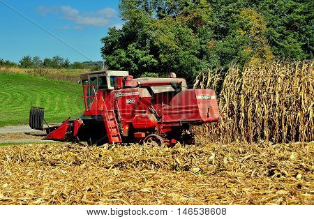 Lancaster County Pennsylvania - October 19 2015: Massey-Ferguson 540 farm thresher cutting down a field of dried cornstalks