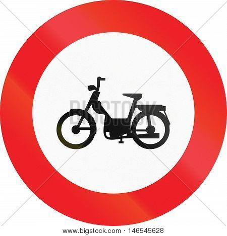 Belgian Regulatory Road Sign - No Mopeds