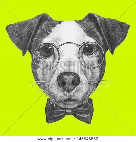 Original drawing of Jack Russell with glasses and bow tie. Isolated on colored background.