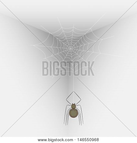 Vector illustration of a spider on a web in the corner of the room