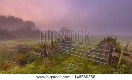 Misty Farmland Gate