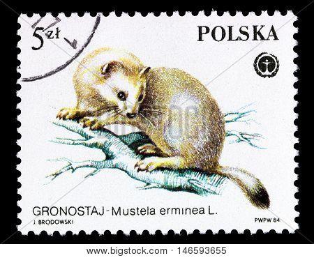 Poland - Circa 1984