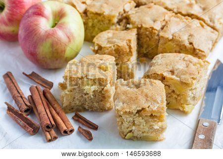 Homemade blondie (blonde) brownies apple cake square slices on parchment horizontal