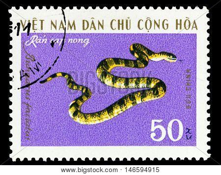 Vietnam - Circa 1970