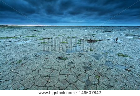 cracked Wadden sea coast in summer at low tide Netherlands