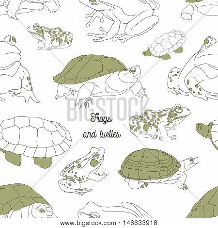 Set with frogs and turtless pattern. Hand drawn vector illustration, EPS 10