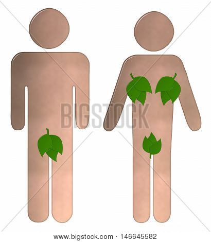 Toilet sign 3D illustration with a nude male and female with their private parts covered with leaves on and isolated white background with a clipping path