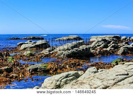 Rocky Coast At Kaikoura Peninsula, New Zealand