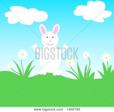 White rabbit and white daisy flowers in a field poster