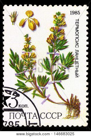 Ussr - Circa 1985
