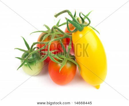 Red And Yellow Tomatoes On Branch