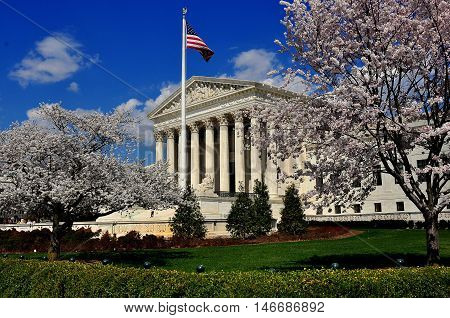 Washington D - April 9 2014: Flowering cherry tress frame the neo-classical facade of the 1935 United States Supreme Court on First Street SE