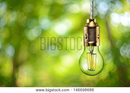 Led Filament Ecologic Bulb