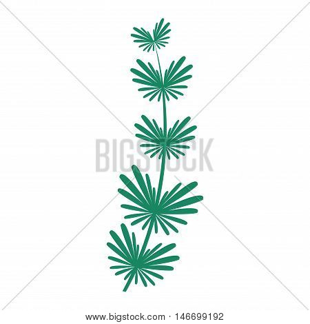 Hand drawn underwater seaweed element isolated on white background. Vector illustration branch green nature seaweed. Aquarium design seaweed sea plant green nature vector leaf decoration.