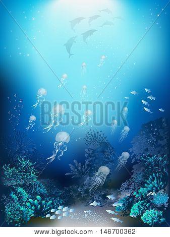 Underwater landscape - jellyfish, corals and algae. Vector illustration