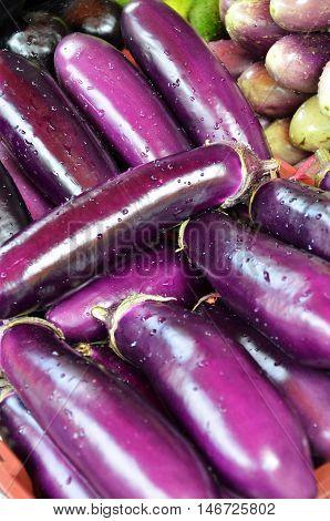 Raw Ripe Eggplant