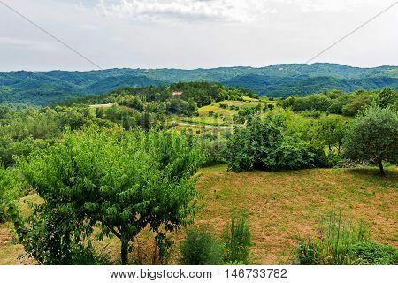 Beautiful mountain scenery forest in Croatia, Istria