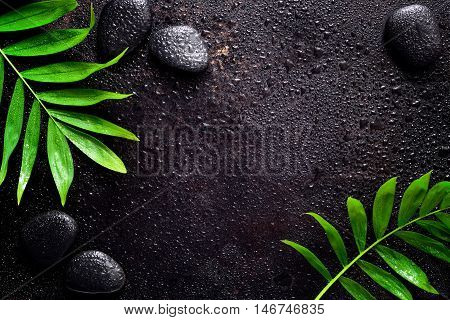 Dark spa background moisturising concept palm leaves and black stones on a dark wet sruface top view