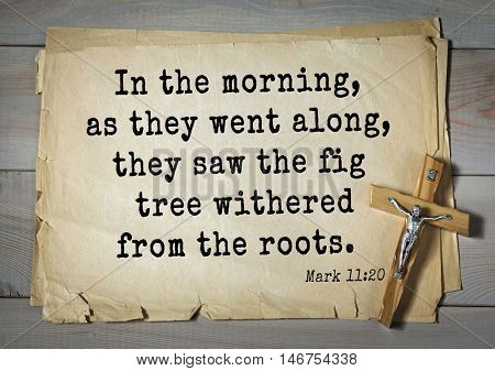 TOP-350. Bible verses from Mark.In the morning, as they went along, they saw the fig tree withered from the roots.