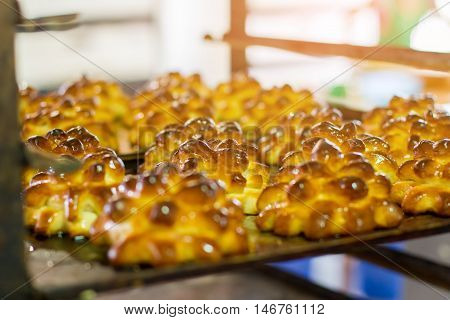 Cooked pastry on tray. Buns shaped as pine cones. Hot dessert from the oven. Delicious baked sweets.