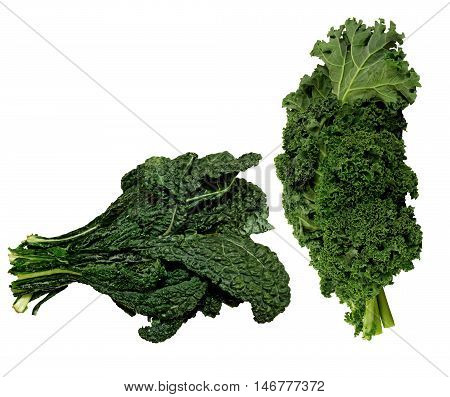 Fresh black and green organic Kale on a white background