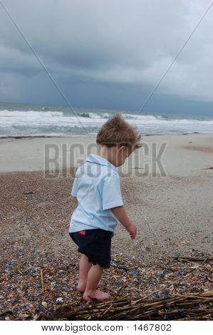 Boy Walking On The Beach