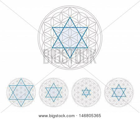 Blue hexagram in Flower of Life, a geometrical figure, composed of multiple evenly-spaced, overlapping circles, forming a flower-like pattern. Hexagram, six-pointed geometric star figure. Illustration