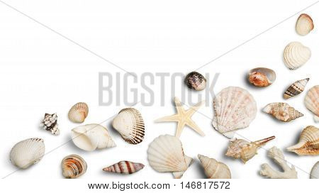 Beach Sand, Starfish, Seashell Corner Border on White Background Hz
