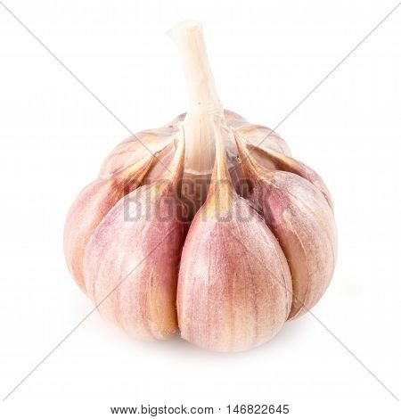 Garlic. Fresh vegetable  isolated on white background