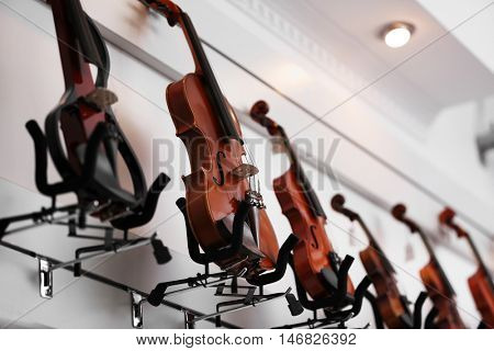 Violins in music shop