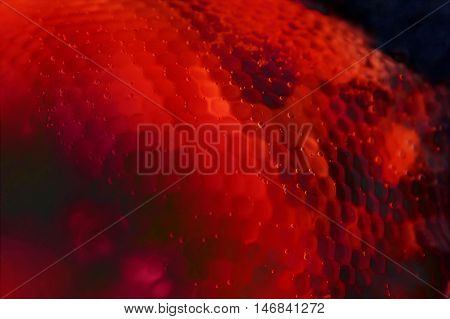 Abstract red biology anatomy nano structure blood background
