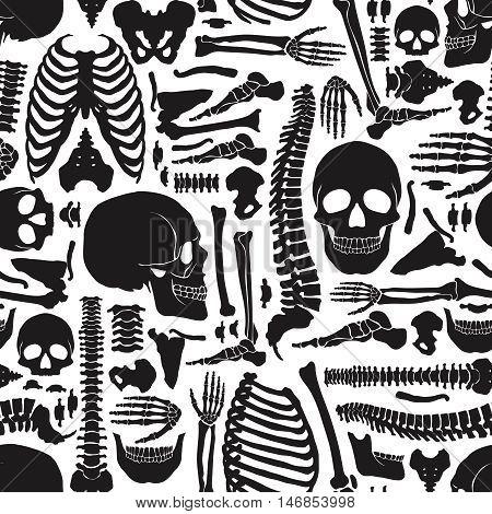 Monochrome human skeleton seamless pattern with big skulls and various single bones flat vector illustration