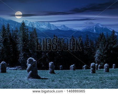 haystack near spruce forest on a meadow in Zakopane of Poland side of Tatra mountains at night in full moon light