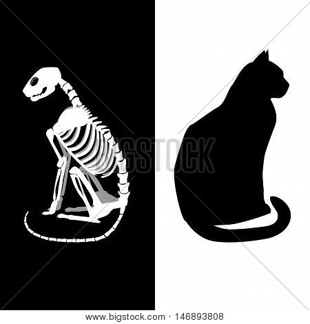 Schrodingers cat vector illustration. Life and death.