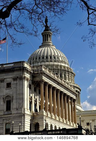 Washington DC - April 9 2014: The Senate Chamber with Corinthian columns and great dome of the United States Capitol building