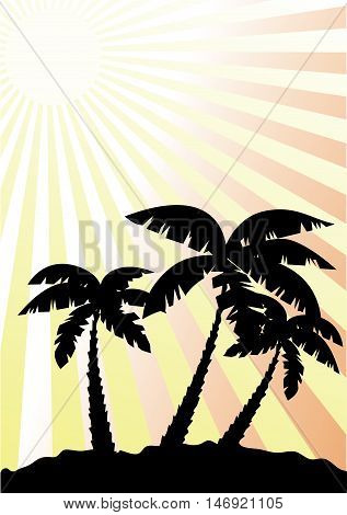 vector illustration of palm trees with sunburst background