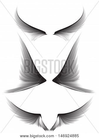 Set gray wings on white background, design element