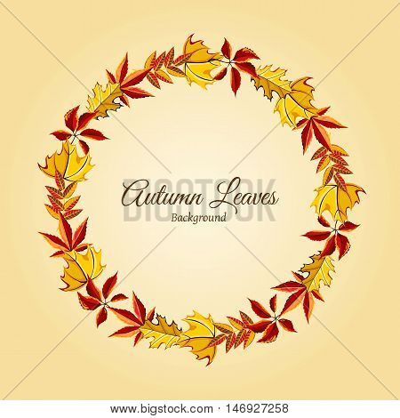 Wreath of autumn leaves vector illustration. Autumnal round frame. Background with hand drawn autumn leaves. Design elements.